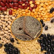 Govt predicts record 257.44 MT foodgrains output for '11-12