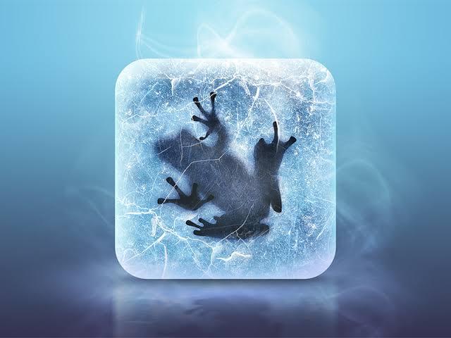 IceFrogFC