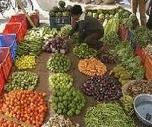 Retail inflation at 10.03%: Soaring vegetable prices pushed up the retail inflation to double digits at 10.03% in August, up from 9.86% in the previous month.