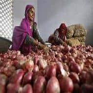 Onions: Farmers vs middle class, tightrope walk for govt