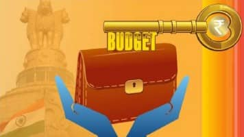 Budget should boost domestic capex & infrastructure spends