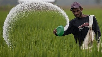 Govt to reform urea policy; price hike not on cards now