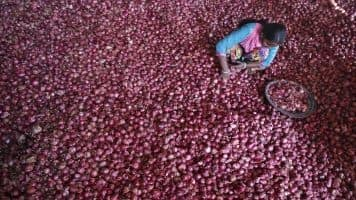 Govt to procure 15,000 tons onion for buffer stock