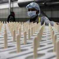 Biocon may test Rs 575: SP Tulsian