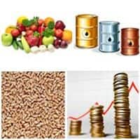 Commodity market getting back on its feet, turnover jumps 9%