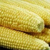 PEC pushes back deadline for 80,000 tonnes corn purchase tender