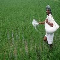 India saves $1.8 bn on fertiliser subsidies, but no reforms