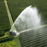 Union Budget 2014: Jain Irrigation up 4.5% on Rs 1K cr sector investment by FM