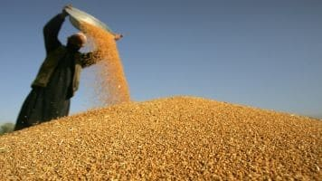 Sell Refined Soy oil, Soybean on pullback: Geofin Comtrade
