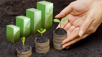 Green certificates sale up 41% to 3.19 lakh in November