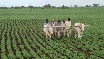 Land acquisition pace up after enhanced compensation: Gadkari