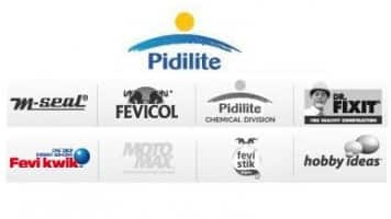 Strengthening raw material prices to impact margins: Pidilite