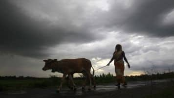 Rains aplenty for now but El Nino may hit Asia in autumn
