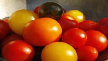 'Waste tomatoes can be used to make car tires'