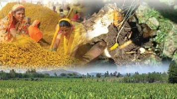 Turmeric to trade in 6710-7170 range: Achiievers Equities