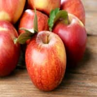 Virginia firm signs deal for export of apples to India