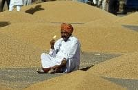 India eyes wheat exports, but cheap Europe supply a hurdle