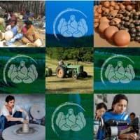 Hold SKS Microfinance, says Kunj Bansal