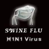 India, US researchers clash over swine flu strain mutation