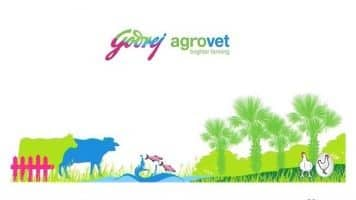 Adi Godrej sees consumption pick up spur Godrej Consumer biz