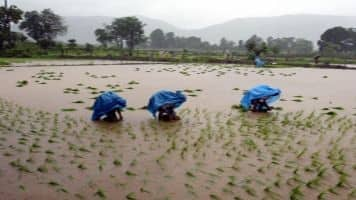 Monsoon deluge in India causes traffic chaos, sewage swirls