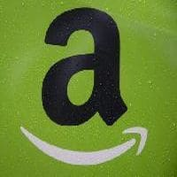 COMMENT: Why its easier for politicos to control an Amazon