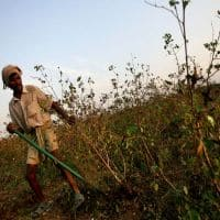 Union Budget 2016-17: Govt commitment to modernise agri mkt a welcome move
