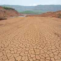 TN to be declared drought-hit; CM announces sops for farmers