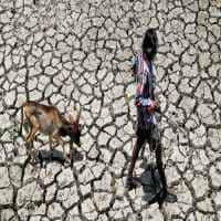 Bengal assessing situation before declaring drought