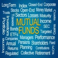 Mutual funds are betting big on the following stocks