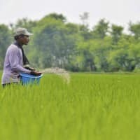 Chambal Fertilisers up 2%, resumes urea production at Rajasthan plant