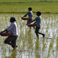 DMK calls 'all-party meet' to deliberate TN farmers' woes