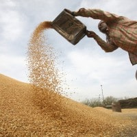 Aadhaar for subsidised food grains through PDS: Here's a reality check