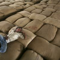 Government slaps 10% import duty on wheat, tur dal
