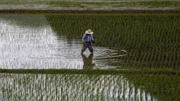 Japan hopes to leave farms out of US economic talks: Sources