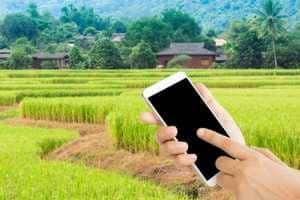 Haryana digitises land records of 94% villages