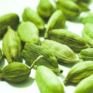 Expect Cardamom futures to trade higher: Karvy Commodities