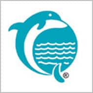 Dolphin Offshore`s revenue visibility remains low: CRISIL