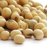 Soybean fut may trade on mixed to positive note: Angel