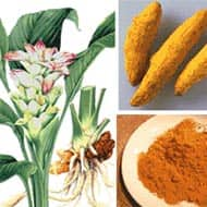 Turmeric to trade in 6822-7102 range: Achiievers Equities