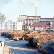 UP resolves sugar cane price row, crushing to start