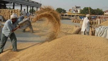 Govt releases Rs 24,250cr to FCI as food subsidy