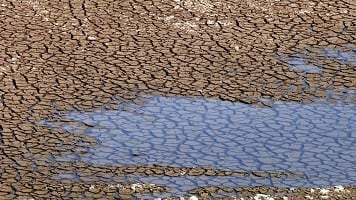 Maha govt declares 'drought' in 29,000 villages