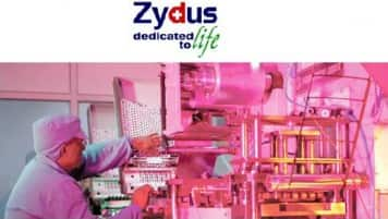 Aim to develop and market molecules in India first: Zydus Cadila
