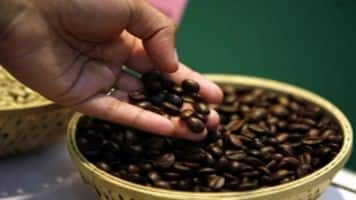 Cold coffee: Cafe Day owner debuts weak, tanks 14%