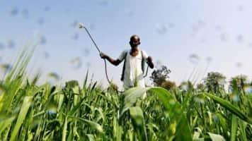Govt policy changes led to lower revenue in fertiliser biz: GNFC