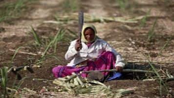 Budget to focus on farmers, jobs, poverty eradication: Sinha