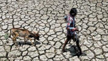 HC to Maha: What steps taken to tackle drought in May-June?