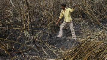 Sugar mills shut early as drought hits cane crop: Trade body