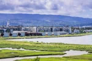 Maharashtra removes over 2,000 illegal huts on mangrove land